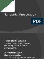 Terrestrial Propagation
