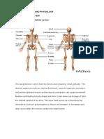 Anatomy and Physiology Same Lovee