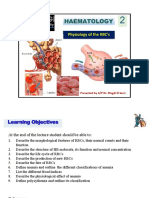 Physiology of RBC BDS 2014