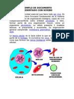 Biologia - Celula