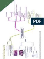Biologia - Sistema Digestivo1 Estrutura