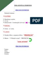 Biologia - Resumo Sistema Reprodutor Feminino