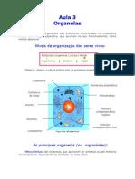 Biologia - Aula 03 - Organelas