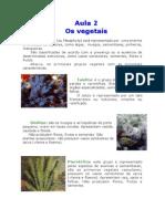 Biologia - Aula 02 - Os vegetais