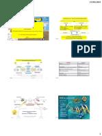 Mitocondrias y Cloroplastos