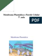 Biologia - Membrana Plasmática - Parede Celular