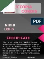 Ectopia Cordis-project