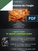 2016-1 DESC PAP Traumato Unguéale