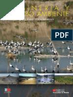 UT9 - La Mineria y El Medio Ambiente
