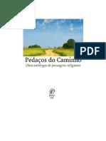 Pedaços Do Caminho - Uma Antologia de Passagens Religiosas - André Bueno