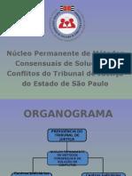 ApresentacaoCEJUSCSparcerias (1).ppt