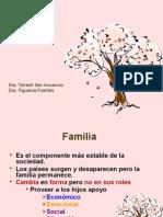 1a presentacion familia  formato