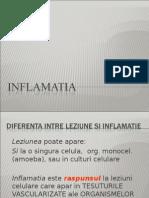 Inflamatia1