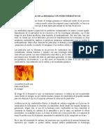 Impacto Ambiental de La Biomasa Con Fines Energéticos