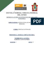 NIVELES DE ORGANIZACIÓN ECOLOGICA