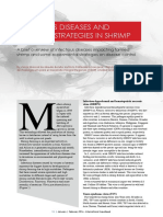 Infectious diseases and control strategies in shrimp