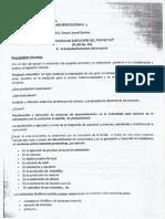 Proceso de Ejecución de Proyecto.pdf