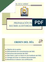 PreparacionAuditoriaENEO.pdf