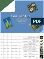 proyecto cactus 1°3vesp comp
