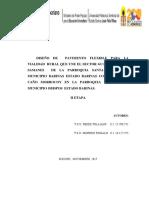 PROYECTO IV 15_11_2015
