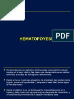 HEMATO - 1era Clase-hematopoyesis