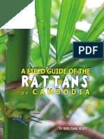 Rattan of Cambodia Guide