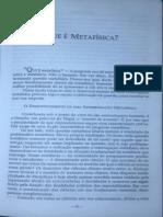 Que é Metafísica - Texto Heidegger
