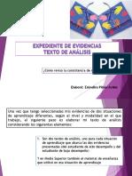 Expediente-o-portafolios-de-evidencias.-Autoevalua-tu-texto-de-análisis.pdf