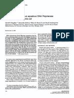 Analytical Biochemistry 1990 Engelke Taq Purification