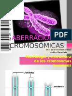 Aberraciones cromosómicas