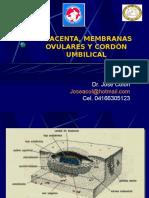 3. Placenta y Alumbramiento