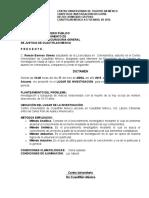 Dictamen Pericial -Lic.Román Barroso