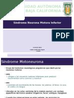 Sx Motoneurona Inf
