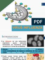 Influenza a A