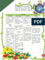 Matriz de Comparación a Partir Del Análisis de Diagramas de Los Ciclos Del Carbono