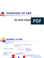 An Overview of Enterprise Resource Planning