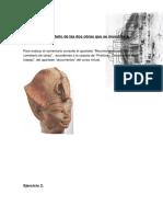 Pec Historia del Arte Antiguo de Egipto y Próximo Oriente - Uned 2010-11