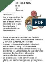 PATOGENIA.pptx