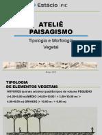 Morfologia Vegetal Aula (03)