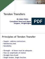Tendon Transfer Revision