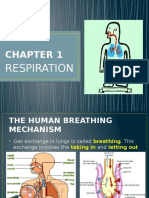 chapter1-respiration