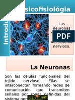 Neuronas y SNC Y SNP