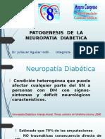 Topicos de Patogenesis de La Neuropatia Diabetica
