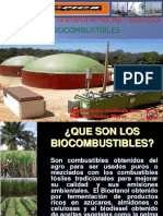 Biocombustibles Tn (2)