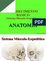 Curso Sobre Musculo-esquelético - Pronto