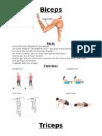muscle presentation sheets