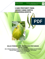 Booklet cabe