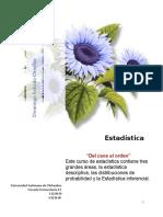 Gu_a_de_estad_stica_por_competencias_2013.doc