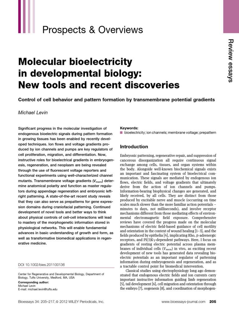 BioEssays Membrane Potential