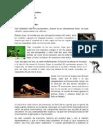 Diario Danza Contemporánea